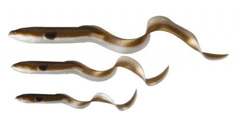 3D LB Real Eel - Size web