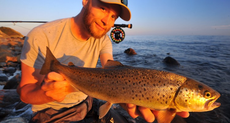 Rasmus Ovesen with a lovely sea-run brown trout.web