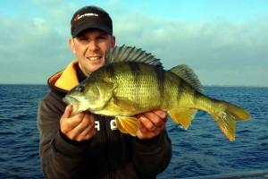 andreas 51cm 2,9kg on diving prey63
