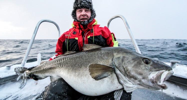 StefanSmith_Cod_33kg_BigBob730g_BlueGlamour_LOWRES
