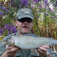 Rolf Felchenfischer