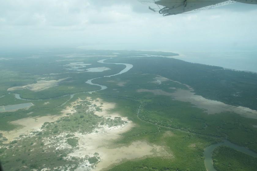 Das Rufiji-Flussdelta. Hier gibts Tigerfish!
