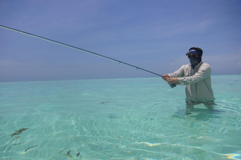 Etwas Flyfishing auf einer Sandbank mitten im indischen Ozean.