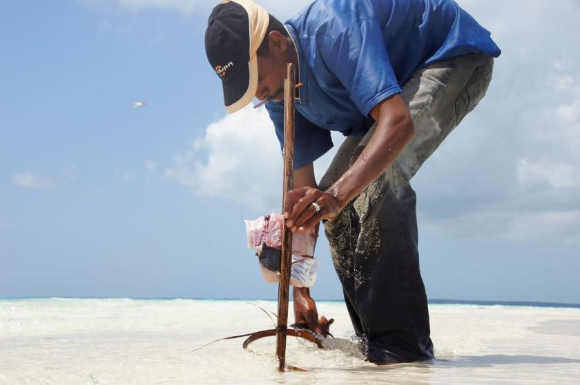 Lecker Fisch BBQ traditionell über Kokosnussschalen zubereitet.