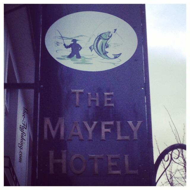 """Ob """"Mayfly Hotel"""" oder ..."""
