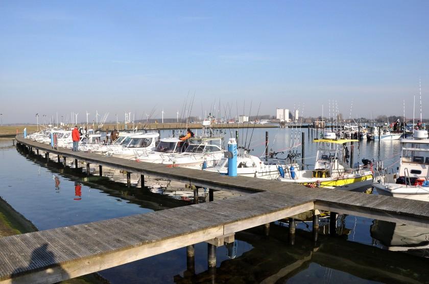 Boote_im_Hafen