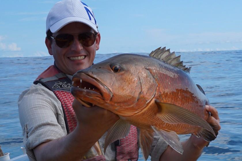 """Cubera Snapper gelten als einer der stärksten Fischarten überhaupt. Sie leben in Höhlen und sobald sie einen Popper """"erbeutet"""" haben möchten Sie schnellstmöglich in diese Höhle zurück. Genau diese Eigenschaft macht es so schwierig diese Fische tatsächlich zu fangen, da in vielen Fällen die Schnur an einem Felsen bricht. Vom Kayak aus ist es noch einmal spannender, da man vom Fisch gezogen wird und während des Drills immer auf herannahende Wellen achten muss."""