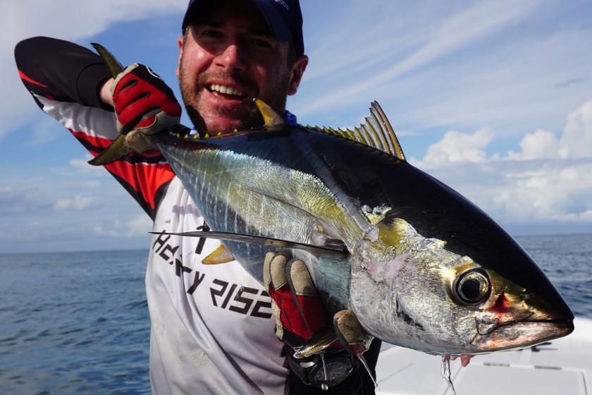 Auch wenn die Durchschnittsgrößen der nearshore gefangenen Yellowfin Tunas meisst nicht über 10kg hinausgeht liefern diese Fische einen enormen Kampf und sind besonders lecker. Besonders spannend ist raubende Tunas zu finden und diese gezielt anzuwerfen.